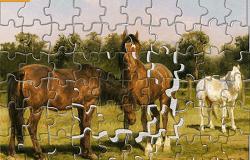 Puzzle cu Cai