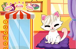 Salonul Pentru Pisici