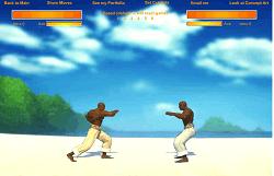 Lupte Capoeira