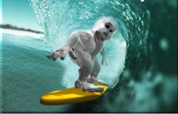 Yeti Surf