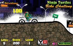 Curse cu Testoasele Ninja