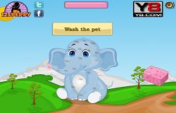 Ingrijeste Elefantul