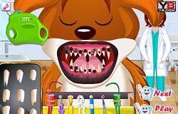 Dentistul Animalelor