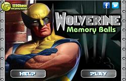 Wolverine Memorie