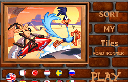 Road Runner Puzzle