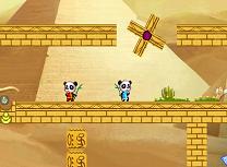 Ursii Panda in Desert