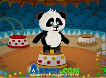 Ursul Panda la Circ