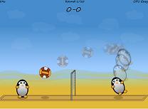 Volei cu Pinguini