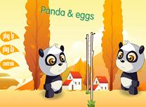 Volei cu Ursi Panda