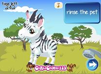 Zebra Zou de Ingrijit