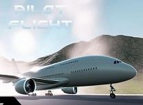 Pilot Airbus