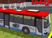 Simulator Autobuz 3D de Parcat