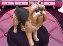 Barbie Salonul de Catei