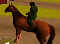 Sarituri cu Calul