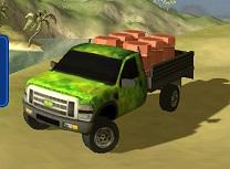 Camion Tropical 3D Livrari