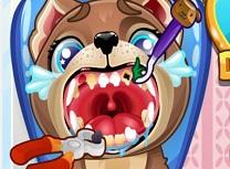 Catelus la Dentist
