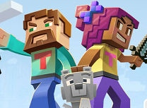 Conectiile Minecraft