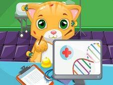 Doctor de Pisici Sim