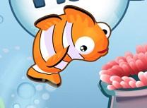 Jocuri cu Nemo