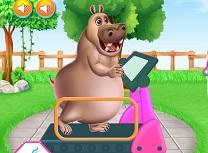 Hipopotamul de la Gras la Slab
