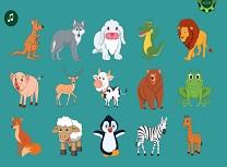 Invata Denumirea Animalelor in Engleza