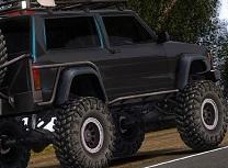 Jeep Roti Ascunse