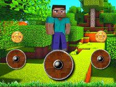 Minecraft Roteste si Zboara