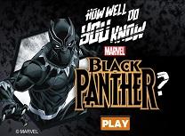 Cat de Bine il Cunoasteti pe Pantera Neagra