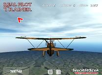 Pilotul