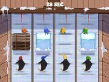 Pinguini Alearga dupa Pesti