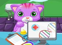 Doctor de Pisici Mici