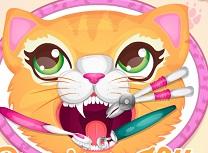 Pisicuta Pretioasa la Dentist