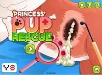 Printesa Salveaza Animale