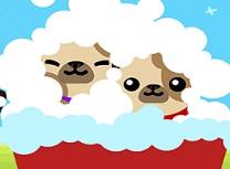 Cutie Pugs Timp de Baie
