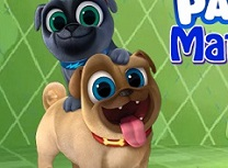 Puppy Dog Pals Potriviri