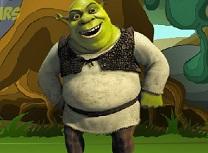 Shrek Stele Ascunse