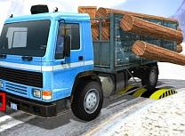 Simulator de Camioane Cargo Asiatic