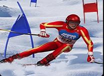 Simulator Slalom de Schi
