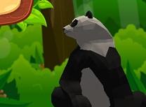 Simulator Panda
