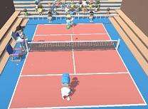 Campion de Tenis