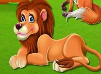 Curata Camerele de la Zoo
